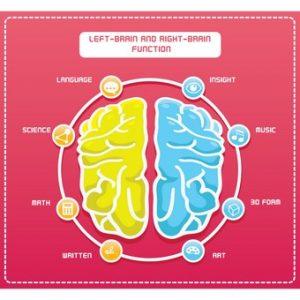 נוירולוגיה תפקודית לטיפול באוטיזם
